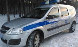 В ТиНАО задержан подозреваемый в краже у пенсионерки