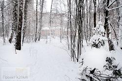 Экологическую тропу обустроят в Московском