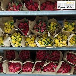 Почем тюльпаны в Ульяновском совхозе?