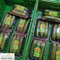 Стартовала продажа огурцов нового урожая