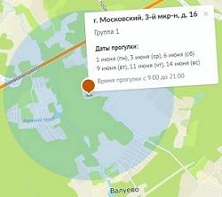 Власти Москвы запустили карту с графиком прогулок