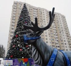 На улице Бианки установили праздничную ель