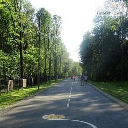 В парке «Филатов Луг» стартуют еженедельные забеги parkrun